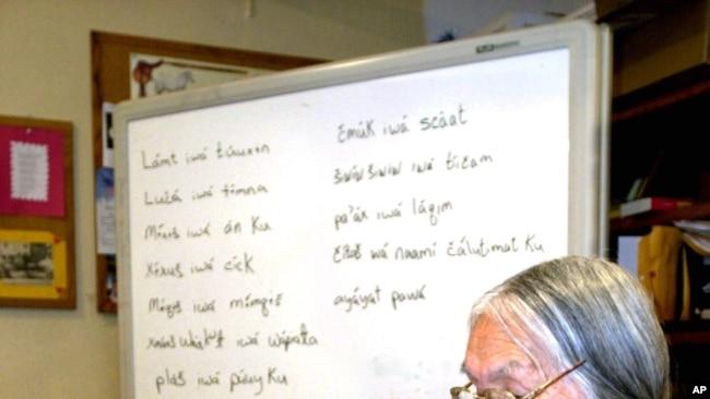 Anciana de Umatilla, la difunta Cecilia Bearchum revisa una gran carpeta que se usa para enseñar Walla Walla, un idioma en peligro crítico que se habla en la Reserva Indígena de Umatilla, Oregon, 6 de marzo de 2002.