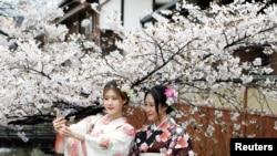 日本、中国、首尔的樱花与游客(32图)