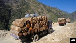 FILE - In this Jan. 23, 2011 photo released by Fauna & Flora International, April 1, 2014 for editorial use, trucks transport illegally logged timber to China in Sawlaw, northern Kachin State, Myanmar.