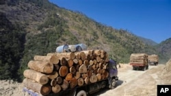 China Myanmar Logging