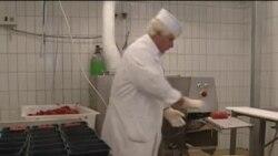 U Briselu, ministri poljoprivrede EU raspravljaju o skandalu sa konjskim mesom