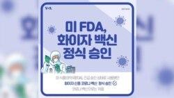 [뉴스 클릭] 미 FDA, 화이자 백신 정식 승인