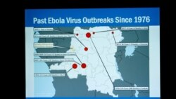 Quiz - Health Workers Stop Ebola From Spreading