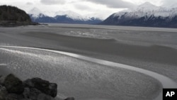 FILE - In this March 7, 2016, photo, a ribbon of water cuts through the mud flats of Cook Inlet, just off the shore of Anchorage, Alaska. Natural gas is bubbling up from an underwater pipeline in Alaska's Cook Inlet, discovered on Feb 7, 2017, when a Hilcorp helicopter spotted bubbles at the surface and reported the leak.