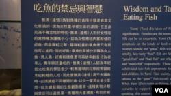 雅美(達悟)族吃魚對他們來說有深刻的文化內涵(美国之音杨晨拍摄)