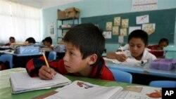 El flujo de las remesas hacia los países en desarrollo alcanzó los $350,000 millones de dólares en 2011 ayudando a la educación.
