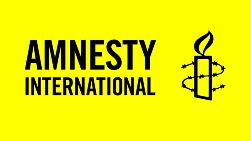 Amnesty International: Չենք կարող Սասնա Ծռեր դեպքերի մասնակիցներին համարել խղճի բանտարկյալ, քանի որ առկա է եղել բռնություն