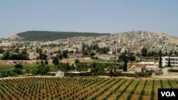 Beşek ji Bajarê Efrîn