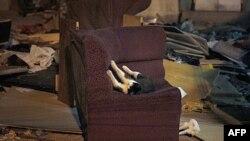 Một con mèo hoang đang chơi trên ghế bành ở bãi rác (ảnh tư liệu)