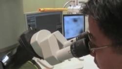 Viruslarga qarshi kurash/Virus study