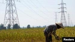 一个老挝农民在田间劳动,附近是大坝的高压电线。(资料照片)