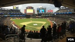 More than 25,000 fans turn out to see cricketing icons at Citi Field in New York, Nov. 7, 2015.
