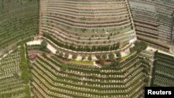 中国浙江省杭州市郊的一处墓地鸟瞰 (2015年3月26日)