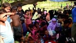 联合国调查小组:应以种族灭绝罪起诉缅甸军方