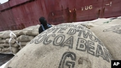 A worker prepares to load sacks of cocoa onto a ship at the port of Abidjan May 8, 2011.