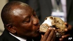 El vicepresidente de Sudáfrica, Cyril Ramaphosa, besó una reconstrucción del Homo naledi durante el anuncio hecho el jueves, 10 de septiembre de 2015.