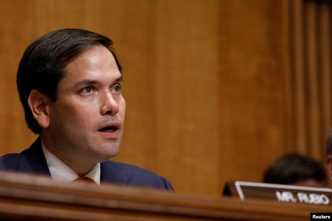 Marco Rubio, senador republicano por Florida y presidente de la Comisión de Relaciones Exteriores del Senado de EE.UU., presidió la audiencia del miércoles 19 de julio de 2017 sobre el colapso del gobierno de la ley en Venezuela.
