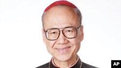 剛被任命樞機的天主教香港教區主教湯漢(資料圖片)