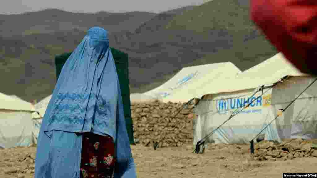 د ملگرو ملتونو د اعلامیې په بنسټ په افغانستان کې شاوخوا ٣٥ زره کورنۍ چې ٢۴٥ زره کسان کیږي د وچکالۍ له وجې د خپلو سیمو پریښوده ته اړ شوي دي