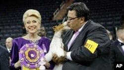 """在纽约举行的威斯敏斯特犬展上,评委丽贾娜•莱宁斯(左)与训犬师加布里埃尔•兰格尔与赢得最高大奖的硬毛猎狐梗""""天空""""(Sky)亲切合影。(2014年2月11日)"""