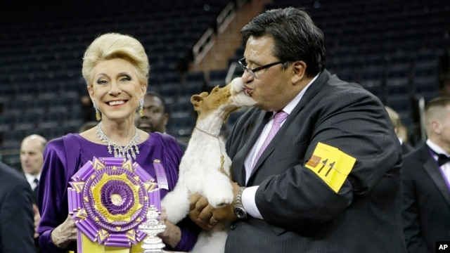 Judge Betty Regina Leininger, left, and handler Gabriel Rangel, pose with Sky, a wire fox terrier, after winning best in show at the Westminster Kennel Club dog show, Tuesday, Feb. 11, 2014.