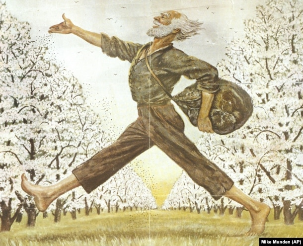 An illustration in The Saturday Evening Post showing American folk hero Johnny Appleseed. (AP Mike Munden)