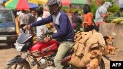 بھارت میں رہائش پذیر ایک کینیڈین خاتون نے دورانِ سروے یہ بتایا کہ وہ خود کو ہر وقت اجنبی محسوس کرتی ہیں۔ (فائل فوٹو)
