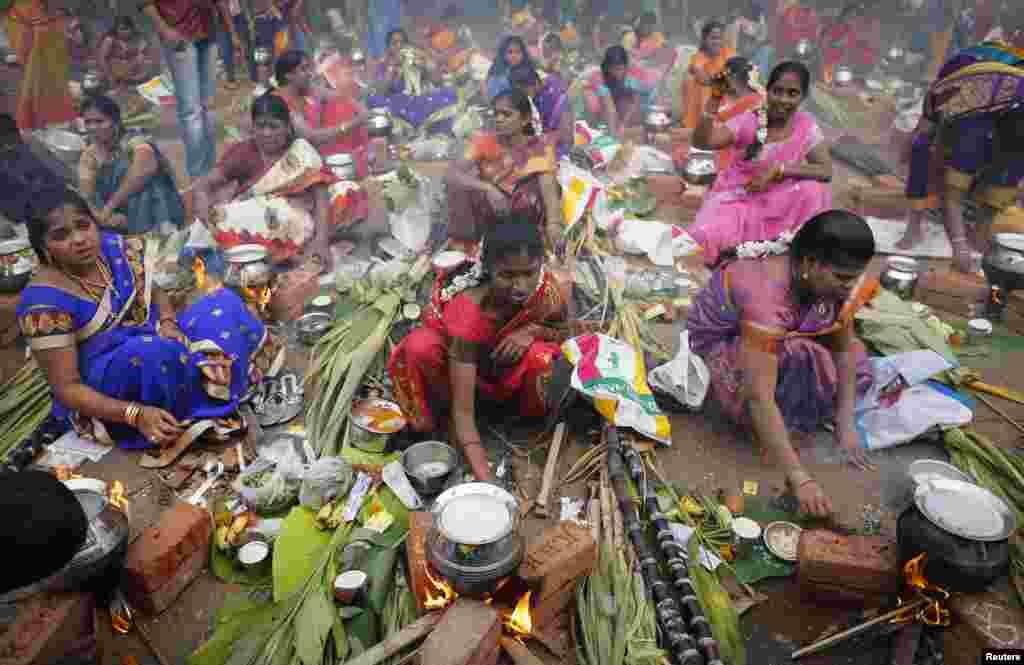 جنوبی بھارت میں فصلوں کی کٹائی کے موقع پر پونگل کا تہوار منایا جاتا ہے جو کسی بھی طرح ایک رنگا رنگ میلے سے کم نہیں۔