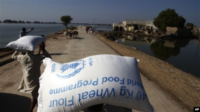 Flood survivors carry bags of wheat flour in the village Khairpur Nathan Shah, Pakistan (file photo)