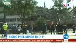 Meksika'da 7,1'lik Deprem