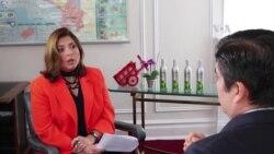 OEA, conducto adecuado frente a crisis de Nicaragua y Venezuela.