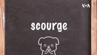 学个词 --scourge