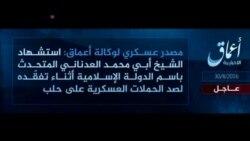 Syria IS Spokesman