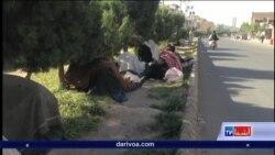 افزایش معتادان در هرات