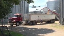 美国农民准备迎接贸易战升级的长期影响