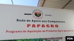 Angola Namibe Papagro