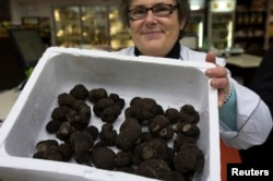 Marinette, a seller, holds a box of Tuber Melanosporum truffles at Rungis International food market as buyers prepare for the holiday season in Rungis, south of Paris, Dec. 11, 2014.