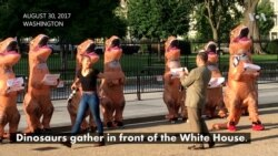 Dinosaurs Roam Washington in Budget Protest