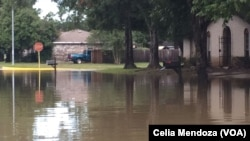 Последствия урагана «Харви». Город Хьюстон, штат Техас