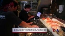 泰国见闻:维护全球鱼类资源从厨房开始