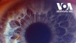 როგორ გამოიყურება ადამიანის თვალი - ვიდეო კოლაჟი