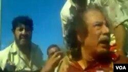 Premye Minis pwovizwa libyen an, Mahmoud Jibril, di konbatan revolisyonè yo te mache pran Kadhafi anba yon ti pon ki konstwi pou kite dlo pase anba yon wout nan vil natal li, vil Sirte