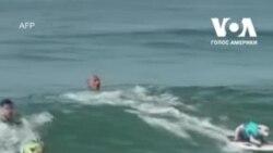 В Каліфорнії пройшли щорічні змагання з серфінгу серед собак. Відео