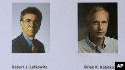 အေမရိကန္လူမ်ဳိး ဓာတုေဗဒ သိပၸံပညာရွင္ႏွစ္ဦးျဖစ္ၾကတဲ့ ပါေမာကၡ Robert Lefkowitz နဲ႔ ပါေမာကၡ Brian Kobilka.