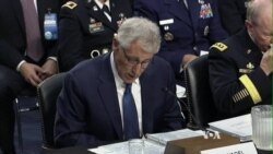 US Defense Secretary: Islamic State War to be 'Complicated'