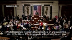 House Democrats Sit-in to Force Gun Vote