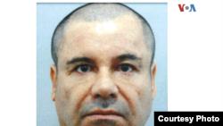 """'Los gemelos de Chicago', considerados uno de los más importantes distribuidores del Cartel de Sinaloa en esa ciudad estadounidense, testificaron el lunes en la jornada 19 de juicio a Joaquín Guzmán Loera, alias """"El Chapo""""."""