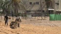以巴加沙冲突周年回顾与展望