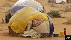 Un enfant devant une hutte dans un camps de réfugiés de Dadaab.