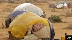 Un enfant devant une hutte dans un camps de réfugiés de Dadaab